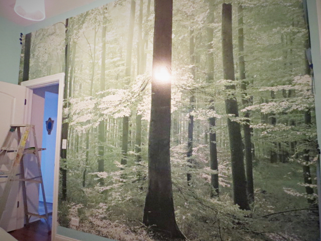 Enlarge your small space with a diy photo mural hometalk for Diy photographic mural
