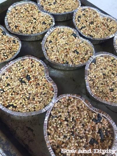 Recipe For Birdseed Cakes