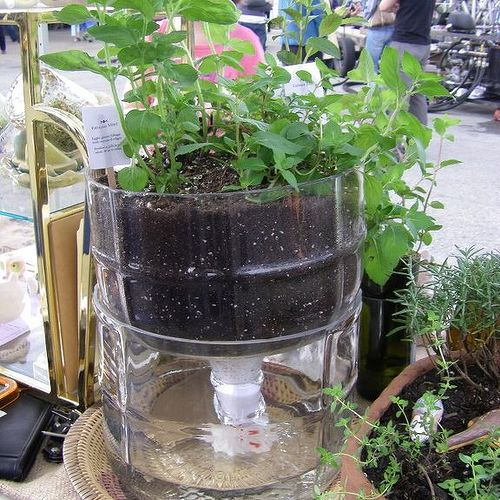 What To Do With Empty 2 5 Gallon Water Jugs Hometalk