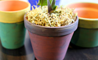 painted pots with natural pigment, crafts, flowers, gardening, home decor, how to