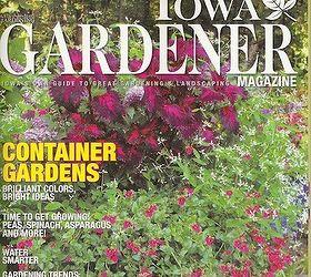 My Container Gardening, Container Gardening, Flowers, Gardening, Hydrangea