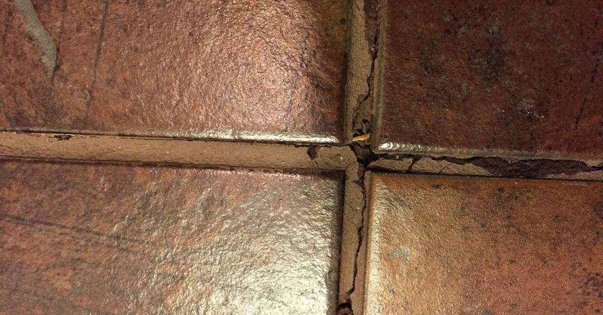 Toilet Leak Under Bathroom Tile Hometalk