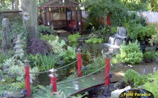 a backyard paradise, landscape, ponds water features