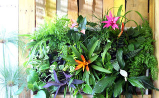 diy tropical pallet living wall, container gardening, flowers, gardening, how to, pallet, repurposing upcycling, wall decor
