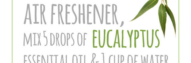 q sayonara stink the 10 best deodorizing tips ever, cleaning tips
