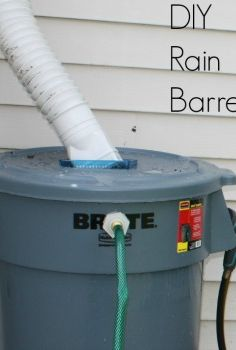 diy rain barrel, diy, gardening, homesteading, how to