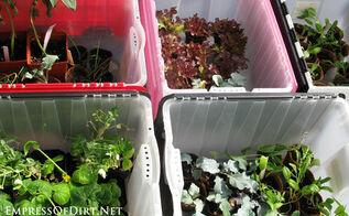 fabulous free trick for spring gardening, flowers, gardening, homesteading
