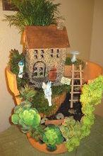 my first fairy garden, container gardening, gardening, home decor