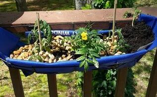 window box cheap hack, container gardening, gardening, repurposing upcycling, add plants and mulch