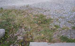 q is there a safe effective method to kill weeds, gardening, lawn care