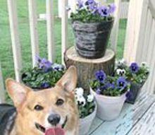 diy flower pots, chalkboard paint, container gardening, crafts, gardening