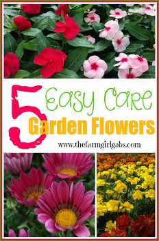 15 garden care tips and tricks idea box by kalpa hometalk for Easy care flowers for garden