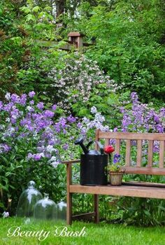 some of the prettiest shrubs care pruning and planting, flowers, gardening, how to