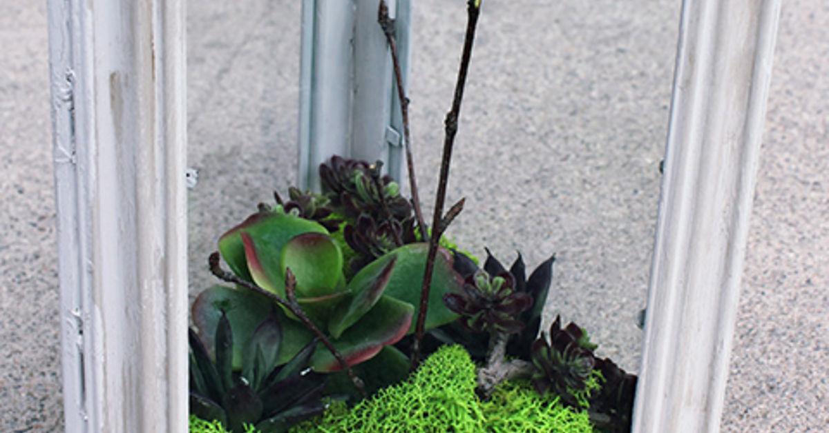 Diy Faux Succulent Terrarium Hometalk