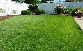 how to prepare soil for sod, gardening, how to, lawn care