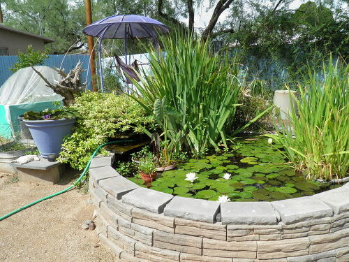Backyard pond hometalk for Concrete garden pond