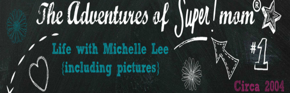 Michelle Lee cover photo