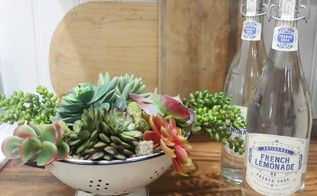a succulent garden in a vintage blue white colander, gardening, repurposing upcycling, succulents
