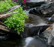 flowers and waterfalls, flowers, gardening, ponds water features
