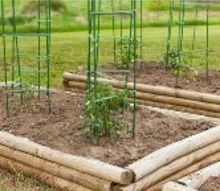 adjustable tomato cage, gardening, homesteading, raised garden beds