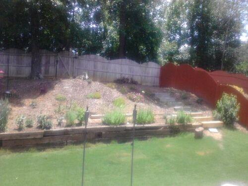 My backyard slope needs serious help | Hometalk