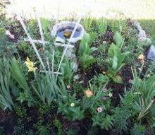 beautiful flower gardens, flowers, gardening