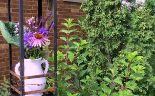 trash to treasure repurposing a broken lantern into garden art, container gardening, flowers, gardening, repurposing upcycling