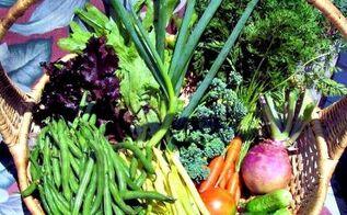30 tips for a great vegetable garden harvest, gardening, homesteading