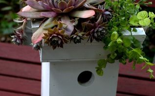 easy to make succulent greenroof birdhouse, container gardening, crafts, gardening, outdoor living, pets animals, succulents, Succulent Greenroof Birdhouse