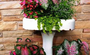 repurposing an old pedestal sink into a planter, container gardening, flowers, gardening, repurposing upcycling, Pedestal sink planter