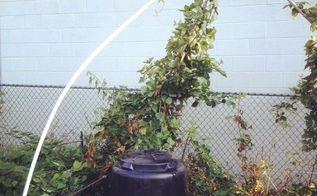 build a garden trellis for under 10, diy, gardening, how to