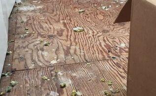 replacing the old carpet with vinyl plank flooring, diy, flooring
