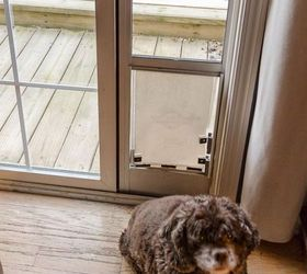how to keep the cat from using the dog door diy dog door hack doors & How To Keep The Cat From Using The Dog Door  DIY Dog Door Hack ... Pezcame.Com