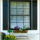 diy outdoor shutters, curb appeal, diy, woodworking projects