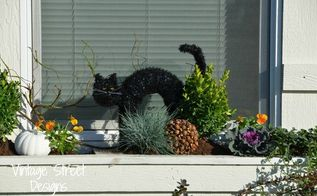 decorating a fall window box, crafts, gardening, halloween decorations, outdoor living, seasonal holiday decor