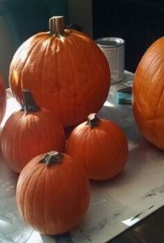 non traditional pumpkins, crafts, seasonal holiday decor, Bought a variety of sizes ready to paint