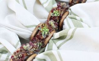diy succulent napkin rings, crafts, succulents