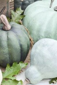 how to make pumpkins look realistic with a simple paint treatment, chalk paint, crafts, how to, seasonal holiday decor