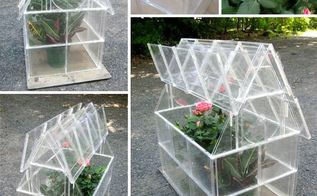 diy mini greenhouse ideas, container gardening, diy, flowers, gardening, homesteading