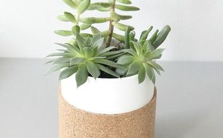 cork succulent planter, container gardening, flowers, gardening, how to, succulents