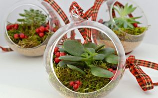 diy live christmas ornament, christmas decorations, seasonal holiday decor, succulents
