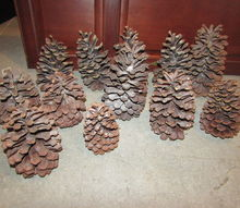 q large pinecones idea s, crafts