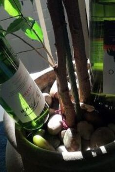 upcycling wine bottles to a plant nanny, gardening, repurposing upcycling