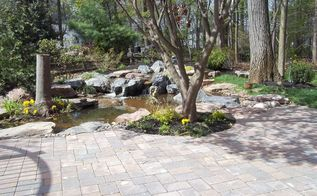 find serenity now with a water garden and patio, decks, flowers, gardening, landscape, outdoor living, patio, ponds water features, Pond and Patio by Lentzcaping Warrington PA