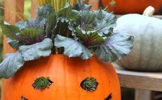 jack o planterns, gardening, halloween decorations, seasonal holiday d cor