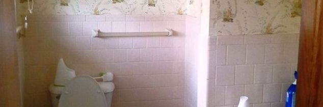 q 1960s pink bathroom remodel, bathroom ideas, home improvement