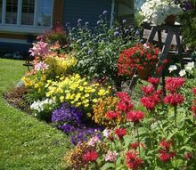 my proudest diy moment 20 years in the making, flowers, gardening, perennials, A mix of perennials annuals and junk