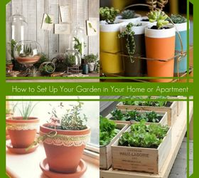 How To Set Up Your Garden In Your Home Or Apartment, Container Gardening,  Flowers