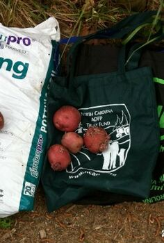 use reusable grocery bags to grow potatoes, gardening, Materials needed soil potatoes and reusable bags