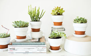 how to add a simple and trendy pop of green to any room, crafts, flowers, gardening, home decor, succulents, I created a little scene with my plants using some magazines books mugs jars and bowls